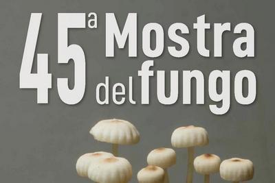 immagine di funghi con scritta 45° mostra del fungo