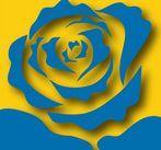 particolare della locandina, una rosa blu stilizzata