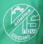 Logo del Vis Nova Giussano rappresentato da un cerchio di colore bianco in cui sono racchiusele scritte vis nova giussano in colore bianco su fondo verde. In alto a sinistra appoggiata sulla lettera v il corpo stilizzato di un corridore
