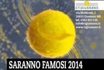 stralcio della locandina raffigurante una pallina da tennis