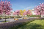 immagine di un parco