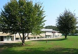 immagine del giardino