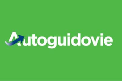logo con sfondo verde con la scritta Autoguidovie